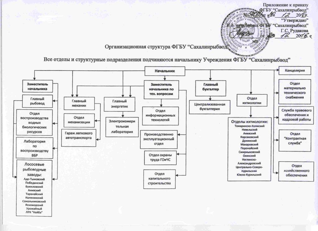 Организационная структура_